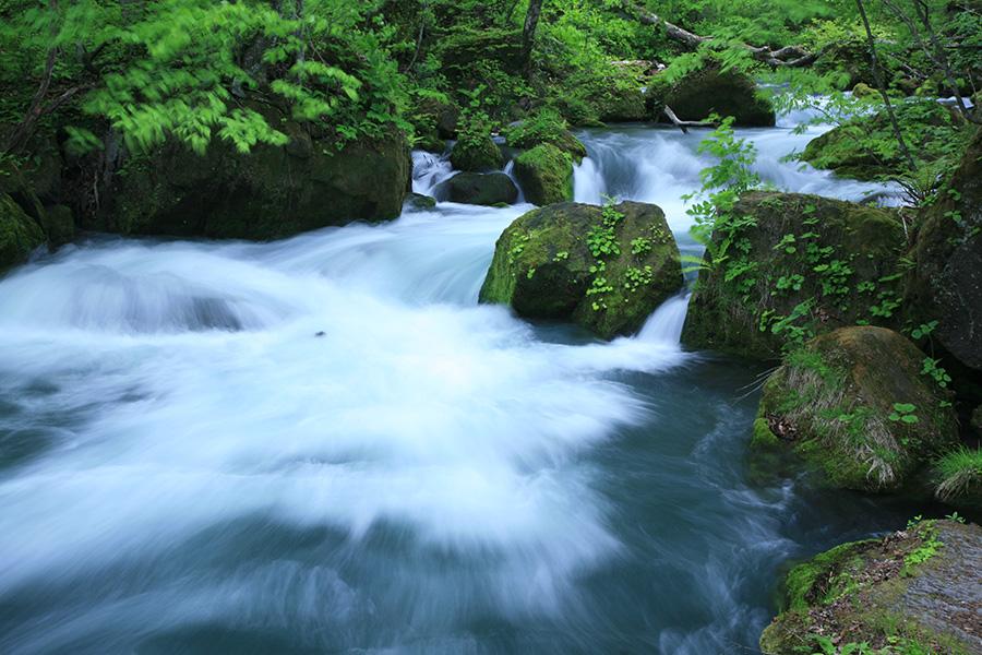 写真の撮り方アーカイブ - 「奥入瀬渓流」の撮影テクニック