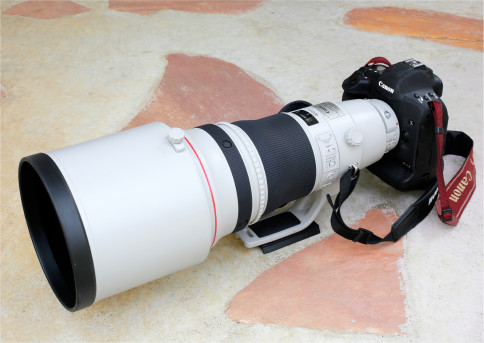 EOS-1D X Mark II+EF400mm F2.8L IS II USM